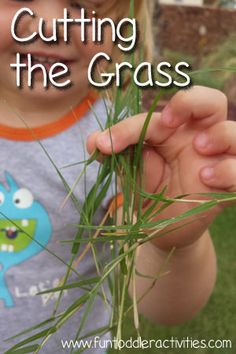 Cutting the Grass. Let him at it with the kid scissors. Why have I never thought of this?