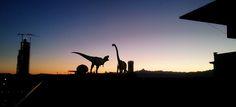 T-rex con Apathosauros