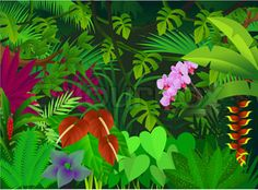 cartoon jungle plants for - photo #23