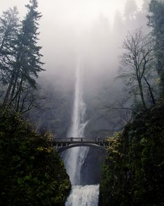 places I want to go Multnomah Falls, Oregon Places Around The World, Oh The Places You'll Go, Places To Travel, Places To Visit, Around The Worlds, Beautiful World, Beautiful Places, Beautiful Scenery, Multnomah Falls Oregon