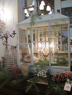 diy aviary idea...make as wide as the room