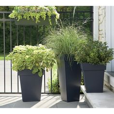 Square planters update the outdoor classic with strong lines in sleek, galvanized steel for a clean, contemporary look. Lightweight planters can be easily positioned around the garden or patio and will weather naturally over time.<br /><br /><NEWTAG/><ul><li>Iron sheet and galvanized steel</li><li>Drainage hole</li><li>Protect from freezing temperatures</li><li>Made in Vietnam</li></ul><br />