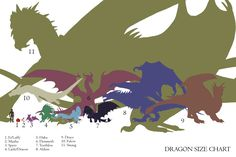 Dragon Size Full Chart - I think Smaug is too big in this tho' Smaug Dragon, Types Of Dragons, O Hobbit, Dragon Artwork, Fantasy Kunst, Fantasy Dragon, Mythological Creatures, Magical Creatures, Fantasy Artwork