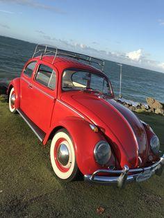 Volkswagen Beetles, Car Volkswagen, T1 Bus, Scooter Motorcycle, Brick Colors, Red Things, Sedans, Vintage Cars, Cool Cars