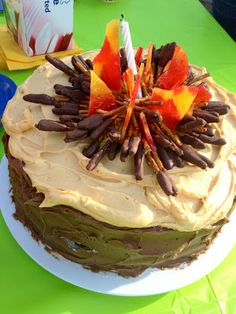 i love this campfire cake! {bh} the new exterior paint color, the best stress relief
