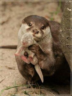 so adorable <3