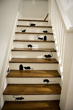 stair mice