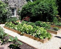 Potager Garden for a Traditional Landscape with a Stone Exterior and Vegetable Garden by Burke Brothers Landscape Design/Build Raised Vegetable Gardens, Vegetable Garden Design, Raised Gardens, Vegetable Gardening, Raised Bed Garden Design, Design Jardin, Traditional Landscape, Garden Boxes, Herb Garden