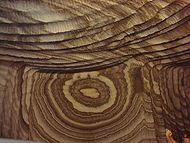In de bodem en aan de randen van de Middellandse Zee bevinden zich dikke lagen steenzout en gips, die zijn afgezet tijdens de Messiniaanse Z...