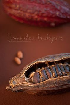 Amaranth and pomegranate: Cocoa and the delights of meals .- L'amaranto e il melograno: Il cacao e le delizie della pasticceria Falicetto Amaranth and pomegranate: Cocoa and the delights of Falicetto pastry - Café Chocolate, Chocolate Lovers, History Of Chocolate, Bean Pods, Cacao Beans, Spices And Herbs, Theobroma Cacao, Fruits And Veggies, Vegetables