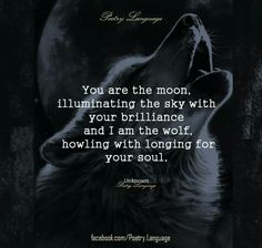 You are the moon, illuminating the sky with your brilliance and I am the wolf, howling the longing for your soul.
