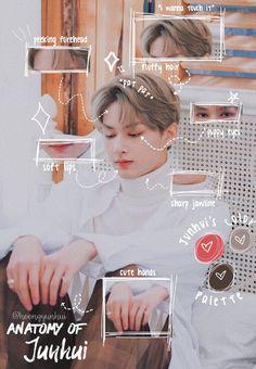 Seventeen Junhui, Seventeen Memes, Woozi, Wonwoo, Wen Junhui, Seventeen Wallpapers, Light Of My Life, Pledis Entertainment, Seungkwan