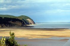 The Fundy coastline from Fundy National Park - looking towards Cape Enrage Lighthouse.