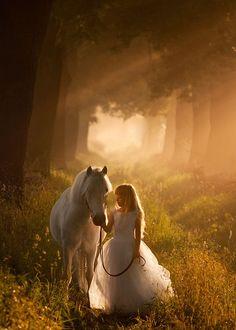 PROP: paard
