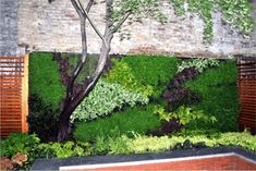 living wall - Google Search