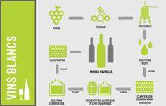 Fabrication du vin | Vin | ABC du vin et de l'alcool | SAQ.com
