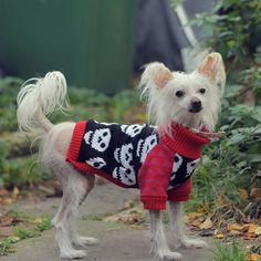 i heart skull knitted dog jumper by willieratbag | notonthehighstreet.com
