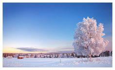 Here is a wintery landscape from the town of Muhos about 25 kilometers from Oulu, Finland. The most beautiful woman in the world in Armi Kuusela, . Pinterest Projects, Winter Scenes, Winter Season, Worlds Largest, Landscape Photography, Most Beautiful, Clouds, Deviantart, Seasons