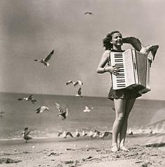 vintage accordion on beach with birds...something we see ALL the time here in Cali!