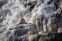 Egerszalók: Sódomb Mount Rushmore, Tours, Mountains, Places, Nature, Thermal Baths, Travel, Painting, Google