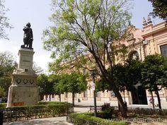 Plaza del Museo.