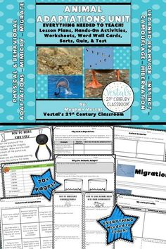 This animal adaptations unit has detailed lesson plans, worksheets, hands-on activities, assessments, and more! #vestals21stcenturyclassroom #sciencelessons #scienceunits #scienceupperelementary #animaladaptationseunit #animaladaptationslessons #anaimaladaptationslessons
