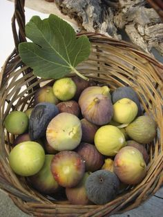 Figs in a baskest from the island of Kea, Cyclades, Greece Fruit And Veg, Fruits And Vegetables, Fresh Fruit, Myconos, Home Grown Vegetables, Fruit Photography, Cookery Books, Fig Tree, Greek Recipes