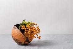 Medium Orange and Black Ceramic Planter for Succulent Contemporary Planters, Contemporary Ceramics, Indoor Planters, Planter Pots, Planter Ideas, Black Succulents, White Ceramic Planter, Cactus Plante, Ceramic Workshop