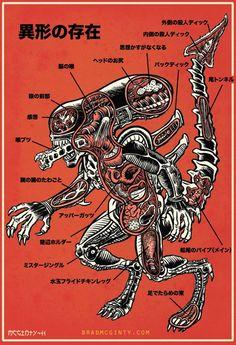 Alien anatomy.