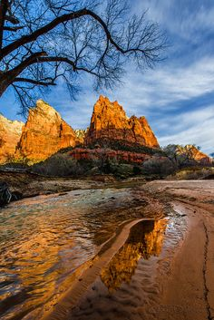 ~ Patriarchs of Zion ~ Zion National Park, Utah....