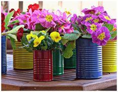 Emérita Desastre: Reciclaje: Dar la lata en primavera