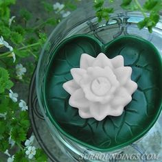 Floating candles - rounds, water lily and luminary rounds Floating Flower Centerpieces, Lily Centerpieces, Floating Flowers, Floating Candles, Water Lilies, Swimming Pools, Outdoor Decor, Plants, Beautiful
