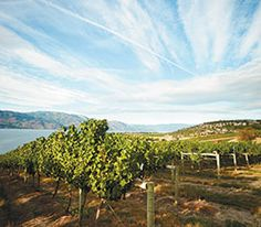 Best restaurants, wineries, and hotels in Kelowna's Okanagan Valley