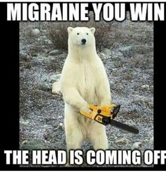 Migraine Remedies a polar bear holding a chainsaw with the caption 'migraine you win, the head is coming off' - If you wear sunglasses indoors as a necessity, not a fashion statement, you may enjoy these memes. Migraine Meme, Migraine Pain, Migraine Relief, Migraine Diet, Headache Quotes, Migraine Quotes, Headache Humor, Funny, Funny Sayings