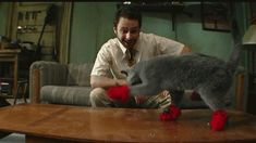 Its Always Sunny In Philadelphia: Kitten Mittens Funny Animal Videos, Funny Animals, Cute Animals, Crazy Cat Lady, Crazy Cats, Charlie Day, Charlie Kelly, Kitten Mittens, Funny Memes