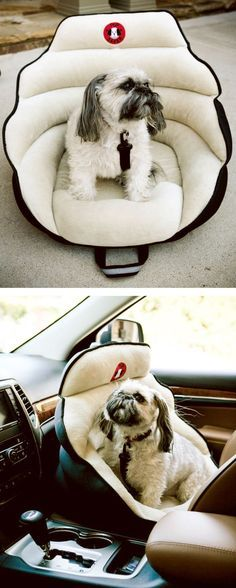 Puppy carseat - http://www.diyhomeproject.net/puppy-carseat