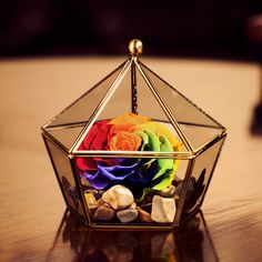 jewellry box vintage geometric terrarium