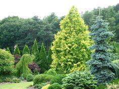 Foxhollow Garden, Dorset