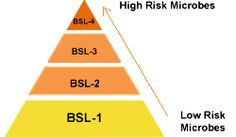 The levels of biohazard