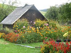 Witryna Wiejska - Tradycyjne wiejskie ogródki