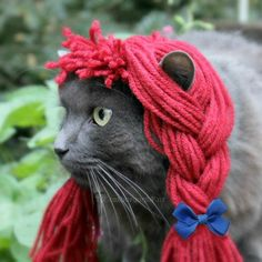 Want to let your feline in on the Halloween festivities? Outfit her in this Raggedy Anne-style wig, complete with tiny blue bows.