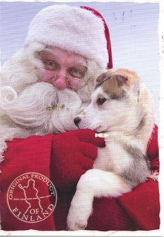 Santa with Puppy - Finland