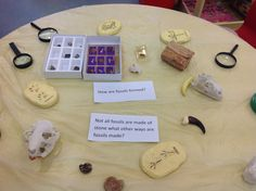 Reception- UW . Dinosaur topic. The children can explore the fossils and answer the questions on the table. International School, Eyfs, Fossils, Early Childhood, Dinosaurs, Shanghai, 5 Years, Reception, Gallery Wall