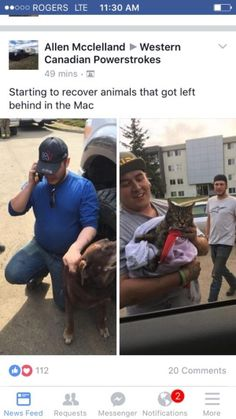 Fort McMurray pets rescued by 'rogue' volunteer rescue team