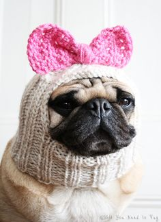 Betty Bow Dog Hat  Pug Hat by AllYouNeedIsPugShop on Etsy