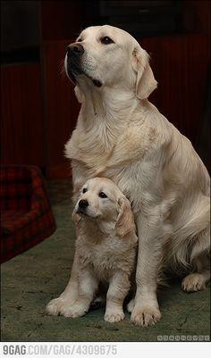 Like father like son =)