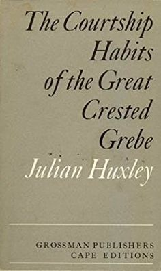 Courtship Habits of the Great Crested Grebe (Cape Editions)
