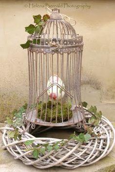 pássaros soltos!!!