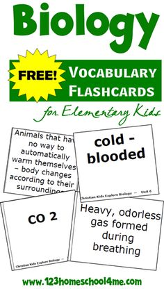 FREE Biology Vocabulary Flashcards - Elementary Level
