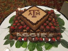 texas a&m grooms cake topper | Wedding, Big Event & Large Party Cakes: